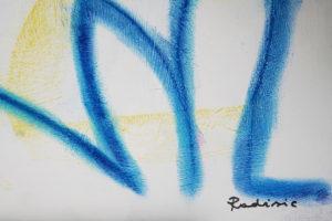 slavko-radisic-achalm-hap-atelier-2006-nr39-makro